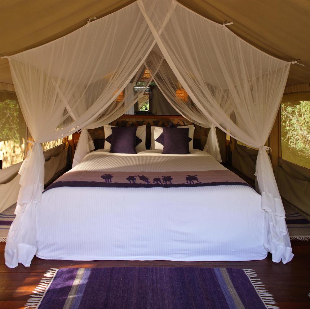 best mara camps kenya