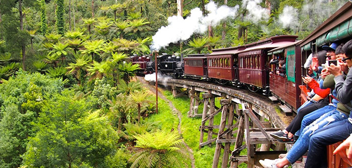 Puffing Billy Adventure