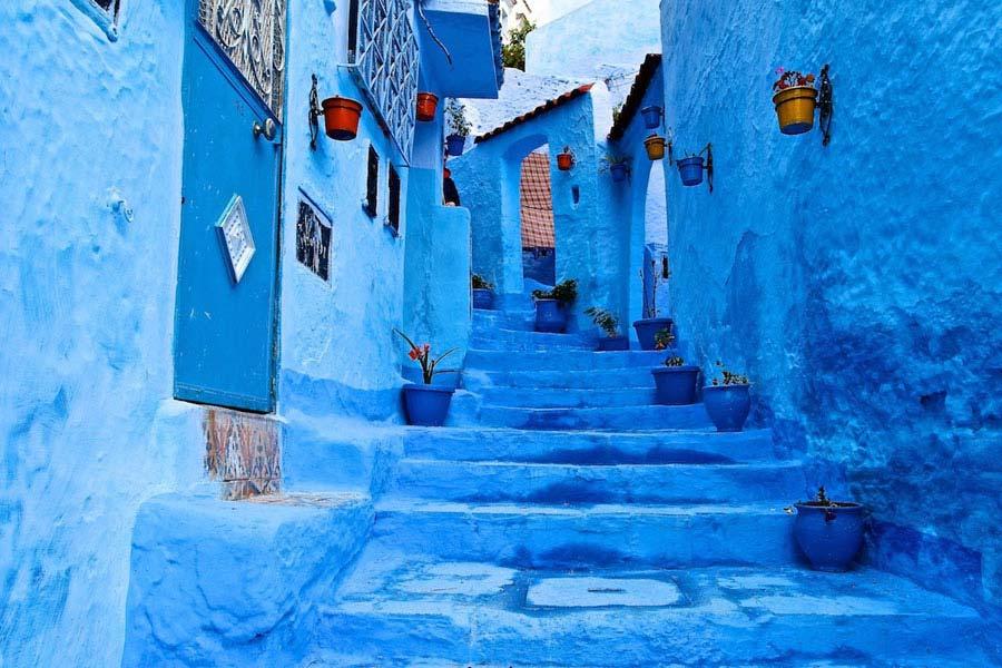 blue morocco