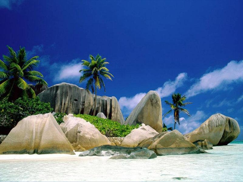 Safaris & Beaches