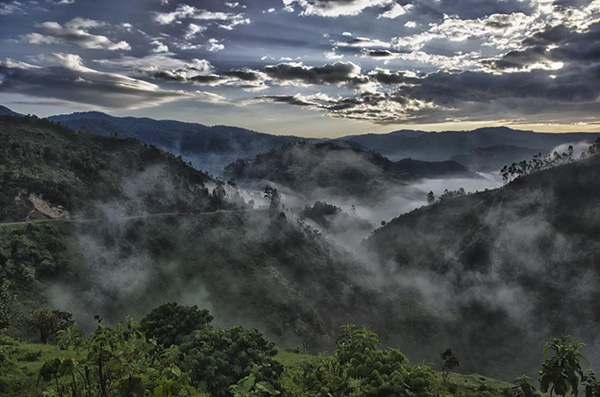 Bwindi landscape photos