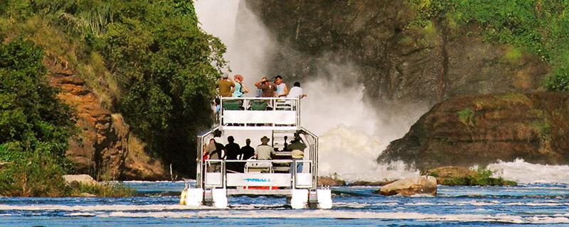 safari cruises