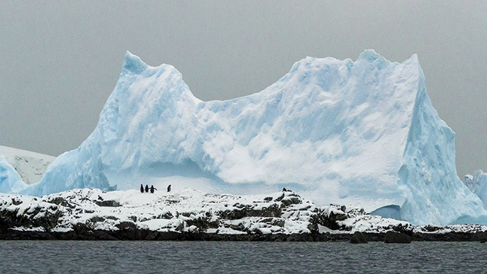 best tours antarctica