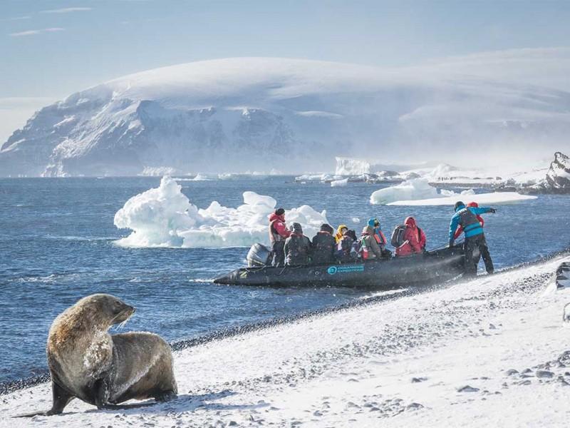 zodiac landings antartica