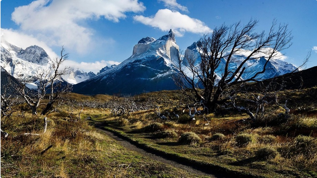 Chile Group Tours