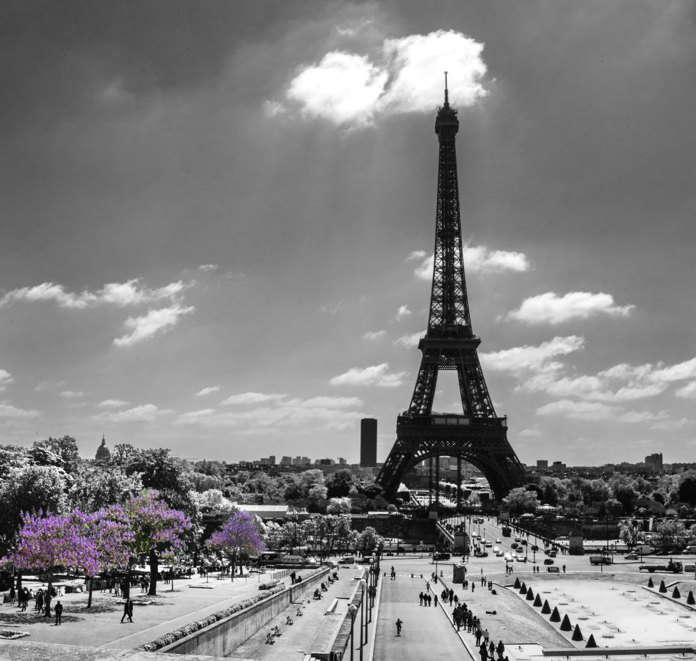 France Group Tours