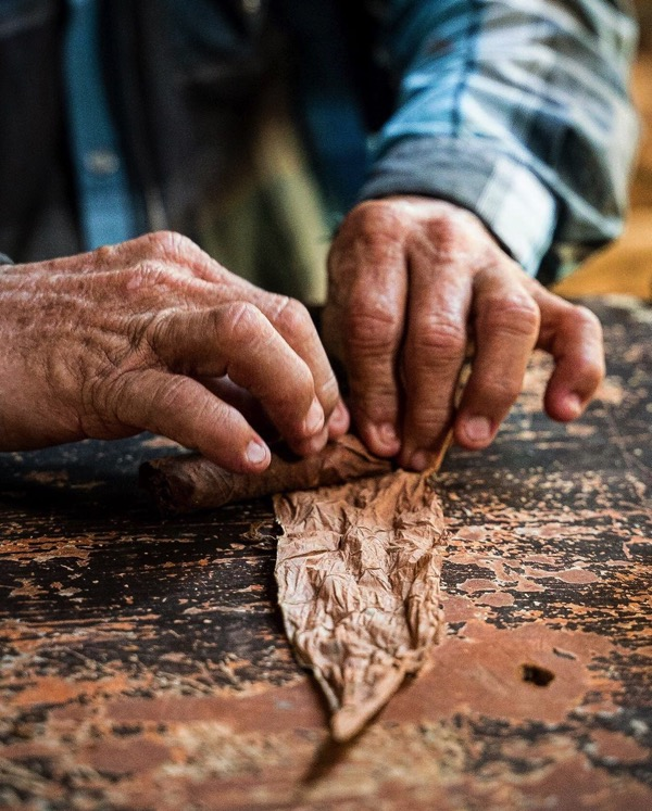 cuban cigar making