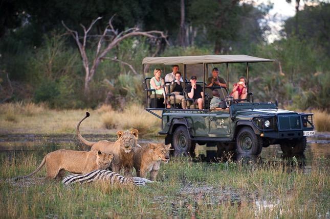 best small group safaris botswana